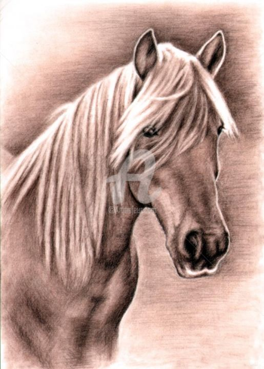 Haflinger Mare - Painting, ©2013 by Arts & Dogs -                                                                                                                                                                                                                                                                                                                                                                                                                                                                                                                                                                                                                                                                                                                          Figurative, figurative-594, pferd, horse, zeichnung, drawing, portrait, porträt, tier, animal, cheval, mane, stallion, mare, andalusier