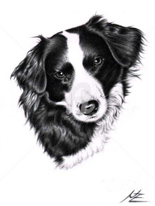 Painting, artwork by Arts & Dogs