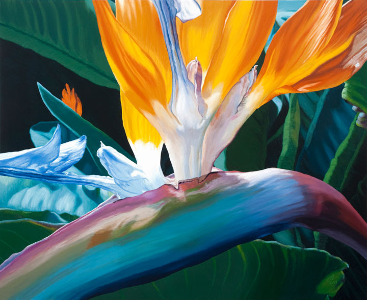 """Painting titled """"Giant Bird Of Parad…"""" by Chloe Hedden, Original Art, Oil"""