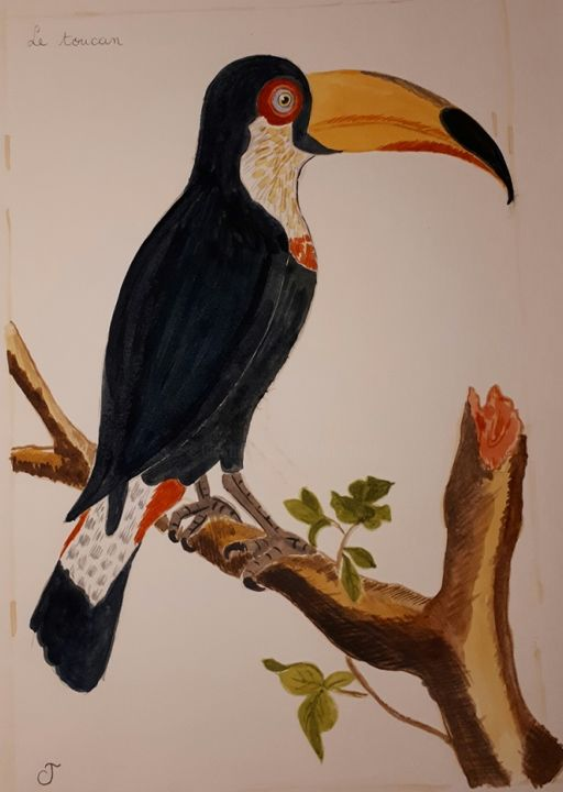 le toucan - Painting,  11.8x9.5 in, ©2018 by Chris Texier -                                                                                                                                                                                                                          Figurative, figurative-594, Birds, toucan