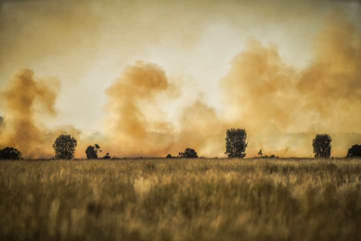 """Photography titled """"Grass fire in Victo…"""" by Christele Alonso, Original Art,"""