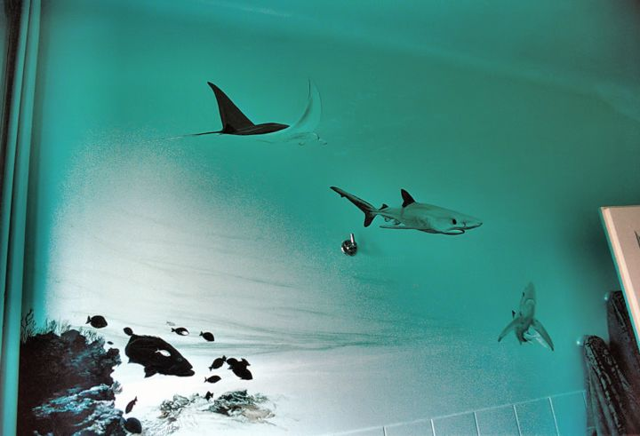 Bathroom visitors - Painting, ©1994 by Christian Girault -                                                                                                                                                                                                                                                                                                                                                                                                                                                                                                                                                                                                                                  Figurative, figurative-594, ocean, mer, eau, profondeur, poisson, dauphin, requin, poisson-ange, merou, bain, sous-marin