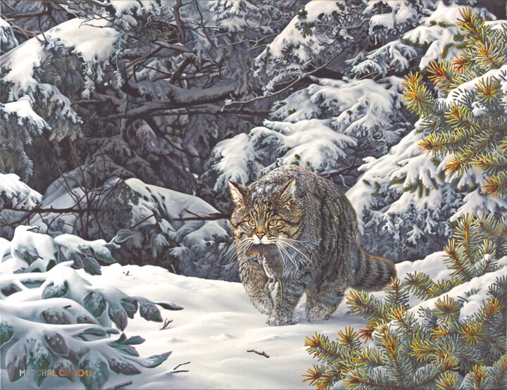 Premières neiges - Painting,  19.7x25.6x1.2 in, ©2017 by Christian MARCHAL -                                                                                                                                                                                                                                                                                                                  Figurative, figurative-594, Animals, Chat sauvage neige, Forêt hiver, Animaux sauvages