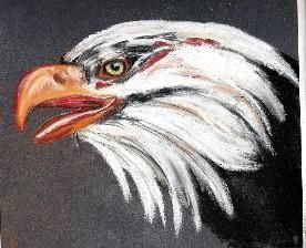 aigle - Painting,  9.5x9.5 in, ©2006 by chris -                                                              pastel aigle