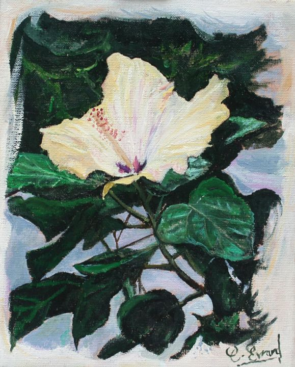 IBISCUS - Painting,  10.6x8.7 in, ©2010 by Claude Evrard -                                                                                                                                                                                                                          Figurative, figurative-594, Botanic, Fleur