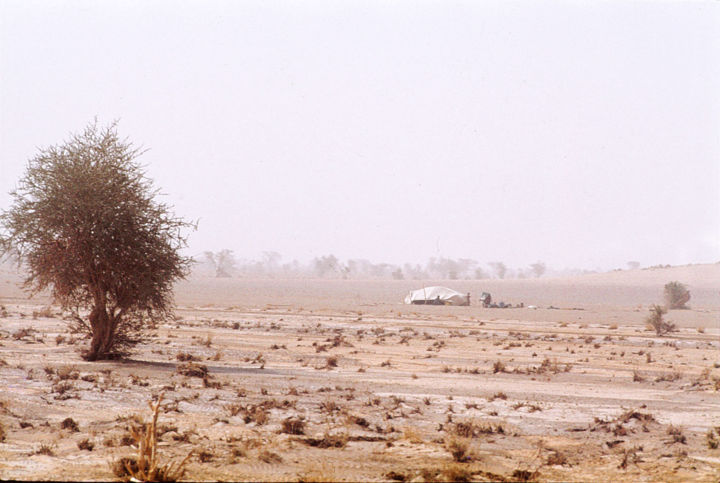 Campement nomade - Photography, ©1979 by Claude Grand -                                                                                                                                                                                                      Landscape, Tanezrouf - campement nomade, Claude Grand, Photos Claude Grand