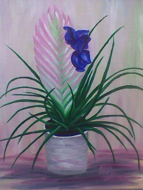 Tillandsia - Painting,  11.8x9.8 in, ©2011 by María Montal Riba -                                                                                                                          Figurative, figurative-594
