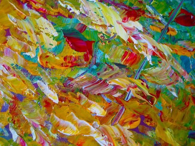 """Photography titled """"Colour Explosion"""" by Cr3ativity, Original Art,"""