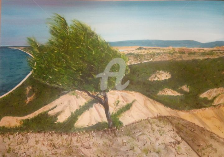 The Lonely Pine at Turk's Head - Painting,  19.7x25.6 in, ©2019 by Roachie - The Gallipoli Artist -                                                                                                                                                                                                                                                                                                                                                                                                                                                                                                                                                                                                                                                                                                                                                                                                                      Impressionism, impressionism-603, Beach, History, Landscape, Mountainscape, Nature, Lone Pine, Gallipoli, Lone Pine Gallipoli, The Nek Gallipoli, #GallipoliArt, #GallipoliArtist, #TheNek, #GallipoliRoachie, #Anzac, #TurksHeadtree