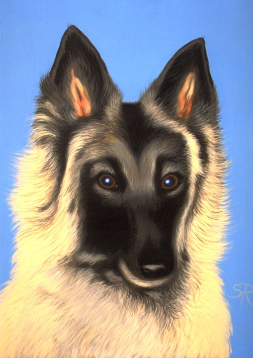 Medor - Painting,  21.7x18.1 in, ©2014 by CZart -                                                                                                                                                                                                                                                                  Figurative, figurative-594, Dogs, Portraits, Animals