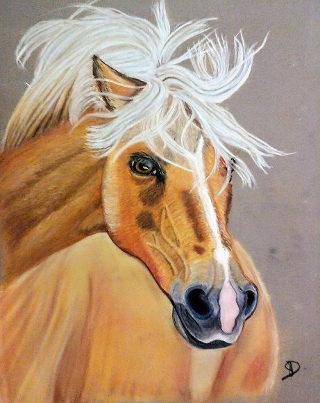 Jojo - Drawing,  15.8x11.8x0.4 in, ©2018 by Sophie Daumy -                                                                                                                                                                                                                                                                                                                                                              Figurative, figurative-594, Animals, Horses, cheval, pastel, portrait