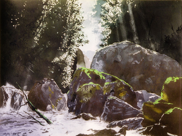 Upper Dart River - Painting,  57x76 cm ©2014 by Dennis Greenwood -                                                                                    Realism, Paper, Landscape, Nature, Water, river, bush, rapids, forest