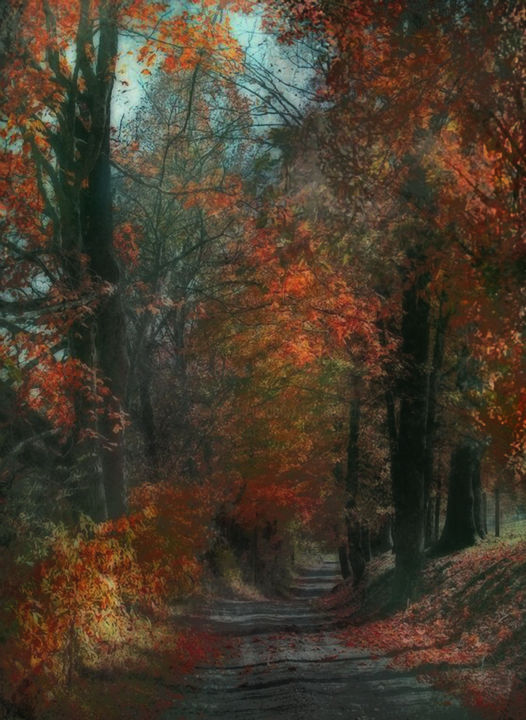 petit chemin - Digital Arts ©2018 by Dodi Ballada -                                            Impressionism, Tree, landscape, digital painting, trees, forest, digital arts, digital drawings, Dodi Ballada, autumn, autumn leaves, sunset