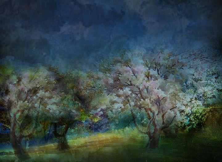 orchard - Digital Arts, ©2018 by Dodi Ballada -                                                                                                                                                                                                                                                                                                                                                                                                                              trees, orchard, fruit trees, apple trees, landscape, digital painting, digital arts, digital drawings, Dodi Ballada