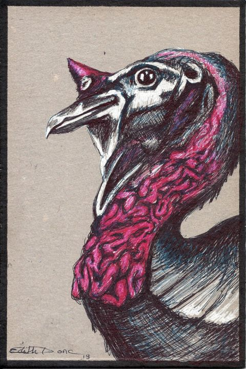 Jeune dindon - Drawing,  7.9x5.1 in, ©2019 by EDITH DONC -                                                                                                                                                                                                                                                                                                                  Illustration, illustration-600, Animals, Birds, dindon, hyeres
