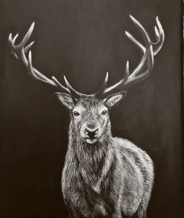 """Painting titled """"Kerry Stag"""" by Elaine Coughlan, Original Art, Acrylic"""