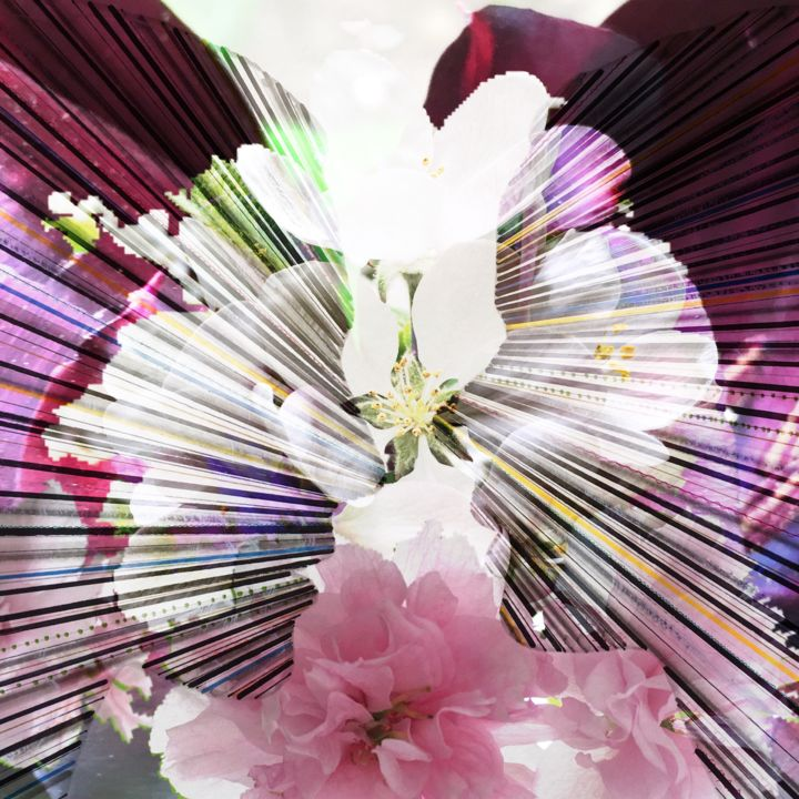 """Digital Arts titled """"In Blossom"""" by Elena Renaudiere, Original Art, Photo Montage"""