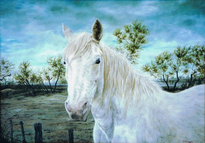 042-le-sauvage-15m.jpg - Painting,  46x65 cm ©2015 by ENIO -                                                            Figurative Art, Canvas, Animals, CHEVAL DE CAMARGUE, CAMARGUE