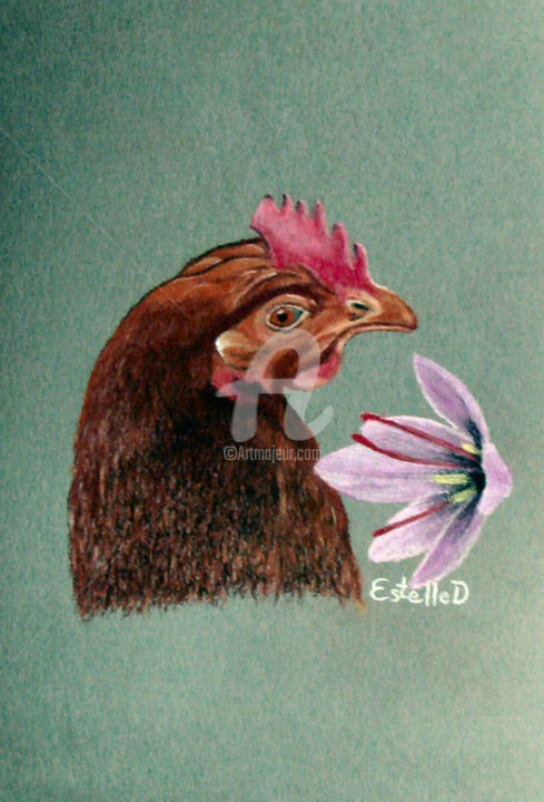 Ma poulette aime le safran - Drawing,  8.3x5.9 in, ©2018 by Estelle D -                                                                                                                                                                                                                                                                                                                                                                                                                                                                                                                                                                                                                                                                                                                                                                                                                                                                                                                                                                                                                                                  Figurative, figurative-594, Agriculture, Animals, Botanic, Colors, Kitchen, art, dessins, pastel sec, poule, poulette, crocus, crocus sativus, safran, or rouge, repas, viande, recettes, Morbihan, Bretagne, EstelleD