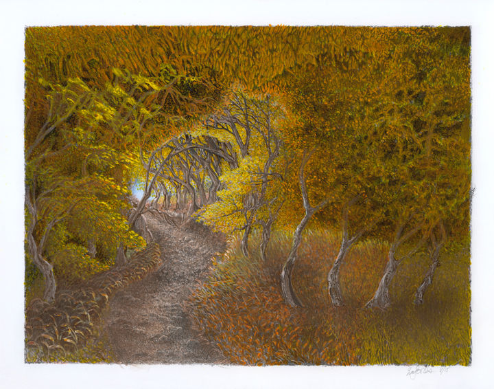 Autumn Path - Drawing,  14x17x0.12 in ©2018 by Eva Maria Jones -                                                                                                        Abstract Expressionism, Illustration, Abstract Art, Landscape, Places, Seasons, Tree, tree art, autumn, fall trees, gold yellow leaves, abstract trees, landscape drawings, color pencil drawing