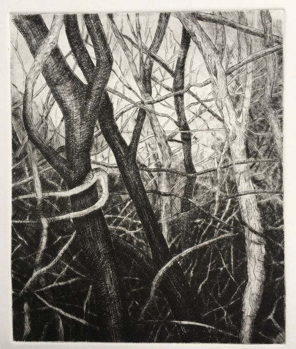 Forêt - Printmaking,  9.5x11.8 in, ©2019 by François Crinel -                                                                                                                                                                                                                                                                                                                  Figurative, figurative-594, Tree, gravure, burin, entrelacs