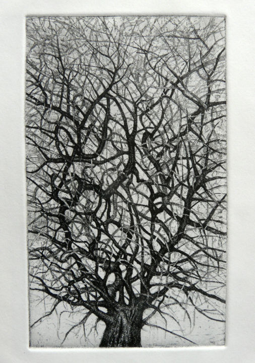 arbre 3 - Printmaking,  12.6x9.5x0.4 in, ©2014 by François Crinel -