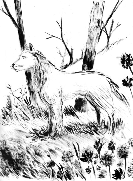 Chien loup - Drawing,  11.7x8.3 in, ©2017 by Fidel Durana -                                                                                                                                                                                                                          Illustration, illustration-600, Animals, Animaux