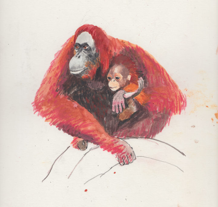 Orangutans - Drawing,  9.1x9.1 in, ©2019 by Fleur Elise Noble -                                                                                                                                                                                                                                                                                                                                                              Illustration, illustration-600, Animals, orangutan, baby, mother and child, love