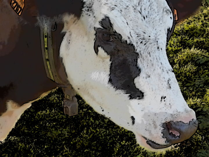 Nature vivante - Photographie,  11,8x15,8 in, ©2020 par Cedricart -                                                                                                                                                                                                                      Figurative, figurative-594, Nature, vache