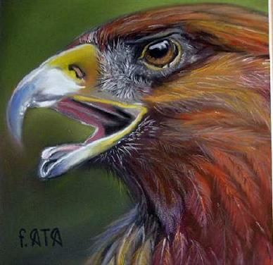 AIGLE - Painting,  7.9x7.9 in, ©2009 by France Ata -                                                                                                                          Figurative, figurative-594