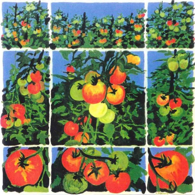 Tomates - Painting,  39.4x39.4 in ©2009 by Francine Rosenwald : parcours artistique en images -
