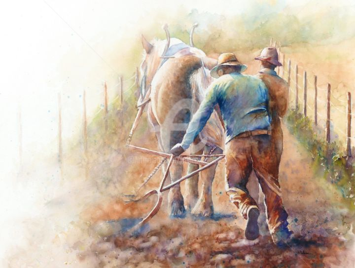 2016-8-labour-labeur.jpg - ©  cheval, trait, labour, champ, fermier, herse, vigne Online Artworks