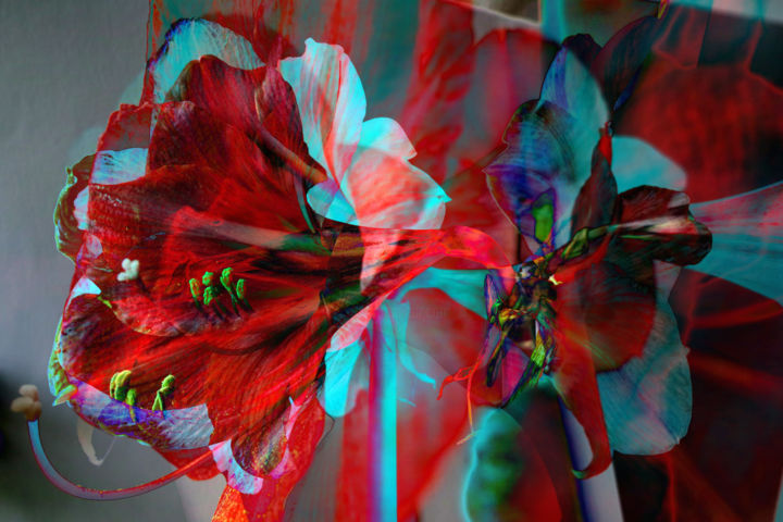 Digital Amarylis 1 - Digital Arts,  23.6x35.4x0.8 in, ©2012 by Franz Hümpfner -                                                                                                                                                                                                                                                                                                                                                                                                                                                                                                                                                                                          Cubism, cubism-582, Flower, Still life, Blume, flower, digital, amarylis, photo, photography, still, stilllife