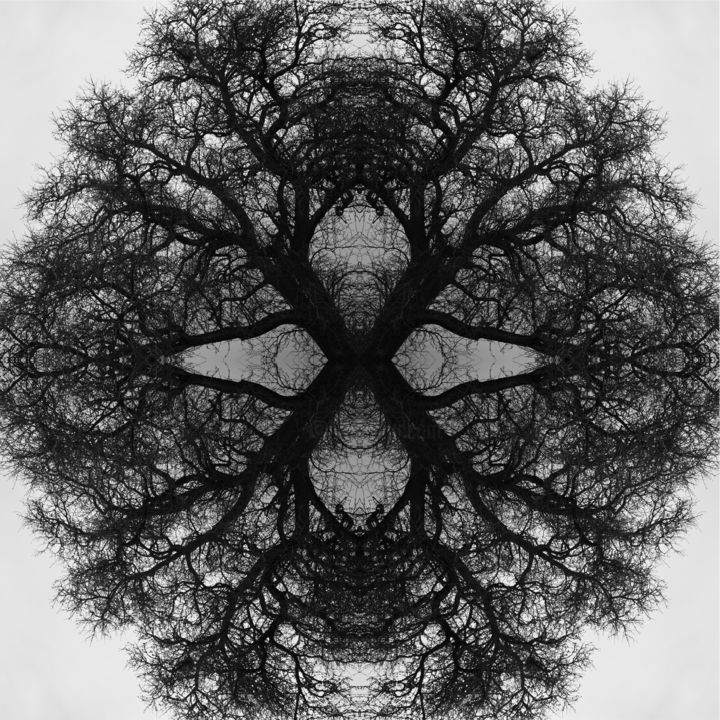 Mandala 03 - Digital Arts, ©2019 by Franz Hümpfner -                                                                                                                                                                                                                                                                                                                                                                                                                                                                                                                                              Geometric, geometric-572, Abstract Art, Tree, Geometric, Nature, Black and White, nature, mandala, photo, montage