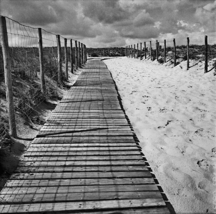 aout2014019.jpg - Photography,  9.5x9.5 in, ©2014 by Frédéric Duchesnay -                                                                                                                                                                                                                                                                      Illustration, illustration-600, Landscape, beach cloud wood sand hill  sand, Black and White