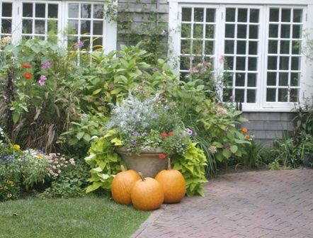 Fall on Nantucket - Photography, ©2008 by Kathleen Reilly -