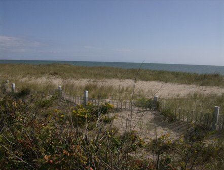 Beach and Flowers - Photography, ©2008 by Kathleen Reilly -