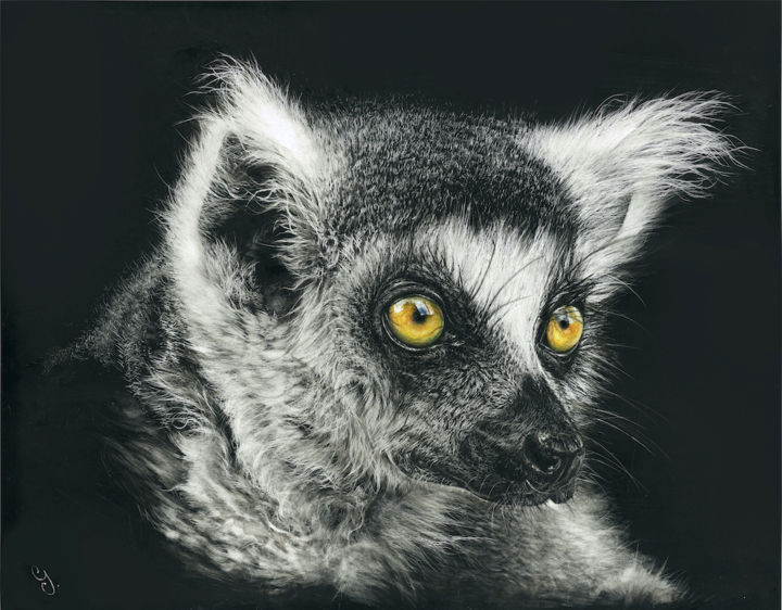 """Drawing titled """"Ninety-five percent"""" by Geraldine Simmons, Original Art, Scratchboard"""