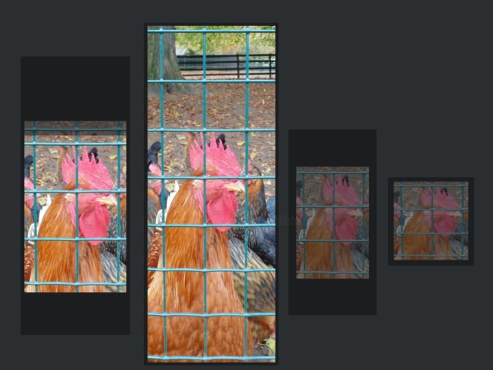 The King Of The Moment - Artes digitais ©2019 por Gerald Edward William Shepherd -                                                        Modernismo, Arte abstrata, Aves, digital art, abstract, sequence, chickens, cockerel, grid, cage
