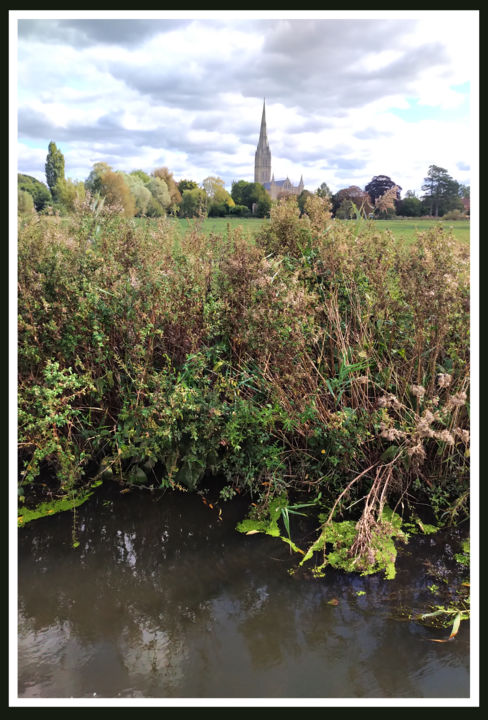 Across The Meadows - © 2020 Salisbury Cathedral, water meadows, English Landscape, river avon Online Artworks