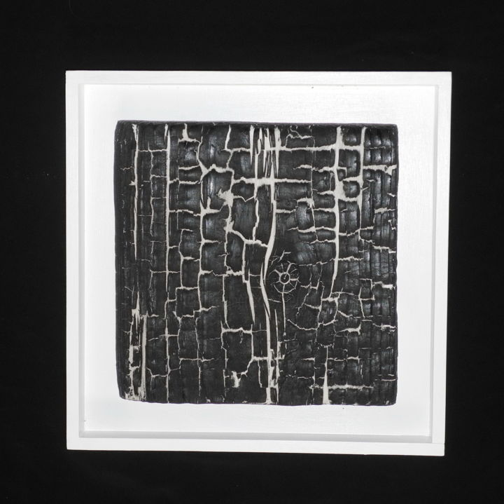 BB2 - Sculpture,  11x11x1.6 in, ©2015 by Gérard Didier -                                                                                                                                                                                                                                                                                                                      Abstract, abstract-570, Wood, Black and White, planche-pin-feu-traitements-, surface-fissures