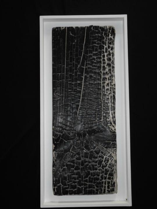 BB10 - Sculpture,  22.8x10.6x1.6 in, ©2015 by Gérard Didier -                                                                                                                                                                                                                                                                                                                      Abstract, abstract-570, Wood, Black and White, planche-pin-feu-traitements, surface-fissures