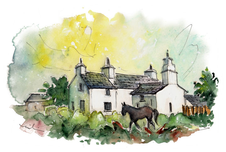 A Horse In Anglesey - Painting,  5.9x8.3 in, ©2017 by Miki de Goodaboom -                                                                                                                                                                                                                                                                                                                                                                                                                                                                                                  Expressionism, expressionism-591, Animals, Landscape, travel, UK, Wales, Anglesey, cottages, black horse