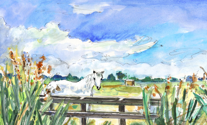 White Horse by Gruissan - Painting, ©2014 by Miki de Goodaboom -                                                                                                                                                                                                                                                                                                                                                                                                                                                                                                                                                                                                                                                                                                                                                                                                                                                                                                                                                                                                                                                                                              Expressionism, expressionism-591, Horses, travel, art, travel art, travelling, impressionism, expressionism, Europe, France, South, Gruissan, beach, sand, landscape, landscapes, fields, animals, white horse, wild horse, wild white horse, plants