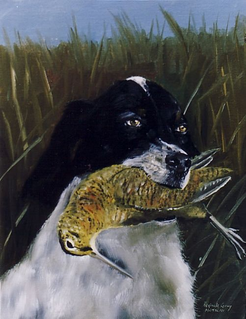 Setter with Woodcock - Painting,  27x33 cm ©1993 by Reginald Gray -