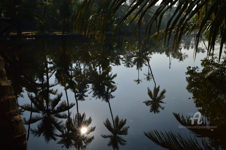 paysage indien reflets  Sud Kochi - KERALA - INDE - Photography ©2013 by Guylaine / GuyL'ami.ART -                                                                                                                                        Documentary, Agriculture, Tree, Asia, Botanic, Colors, World Culture, Rural life, Nature, Travel