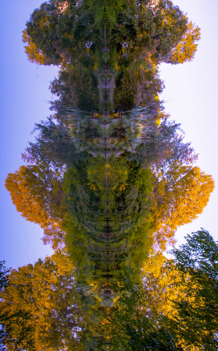 Tot'aime - Photographie,  15,8x11,8x0,1 in, ©2010 par Diaph -                                                                                                                                                                                                                                                                                                                                                                                                                                                                                                                                                                                                                  Arbre, Art abstrait, Eau, Saisons, abstraction, arbres, nature, eau, feuillages, sculpture, totem, personnage, Limited Edition