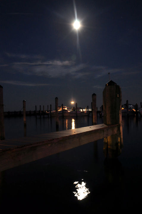 e15dff3ee5 Moonlight on the Docks - Photography, 40x60 cm ©2016 by Heather Schmaedeke  - Realism