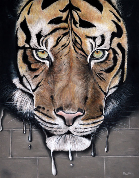 Fusion - Drawing,  40.5x51.5 cm ©2016 by HELENE ROUX -                                            Other, Animals, tiger, tigre, drawing, painting, félin, art à vendre, art for sale, animaux, art animalier, hélène roux, wildlife, wild, sauvage