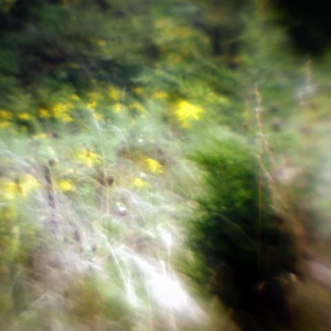 """Photography titled """"HM8"""" by Michael Hewis, Original Art,"""